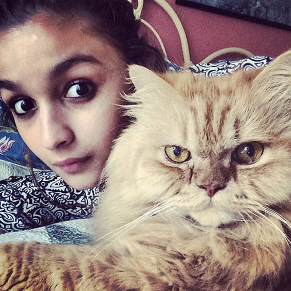 Bollywood Actress Alia Bhatt Pet Selfie
