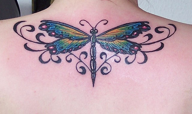 Beautiful Dragonfly Tattoos Ideas 2016