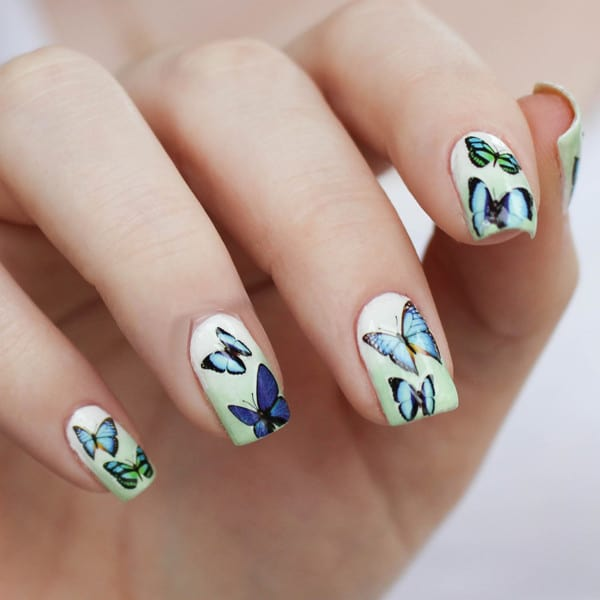 Superlative Blue Butterfly Nails Designs for Girls