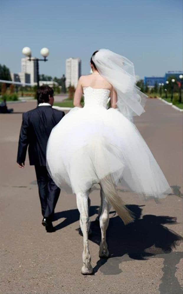 Perfectly Timed Funny Wedding Pictures