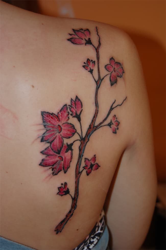 Back Shoulder Cherry Blossom Tattoo Designs for Party