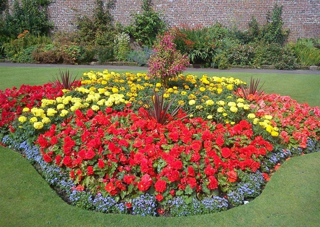 20 beautiful flower designs ideas pictures sheideas for Flower bed designs for front of house