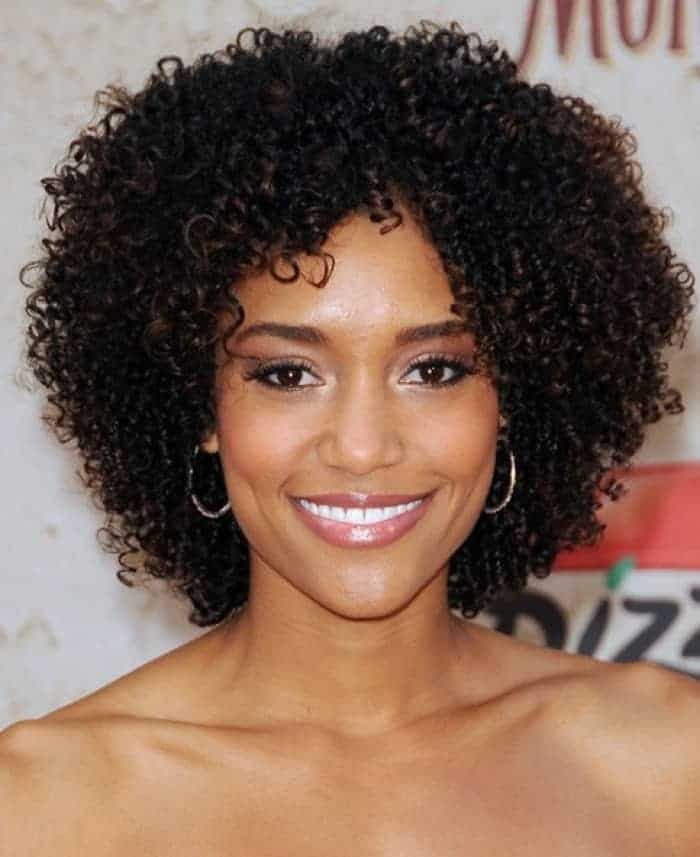 Short Curly Braids Hairstyles