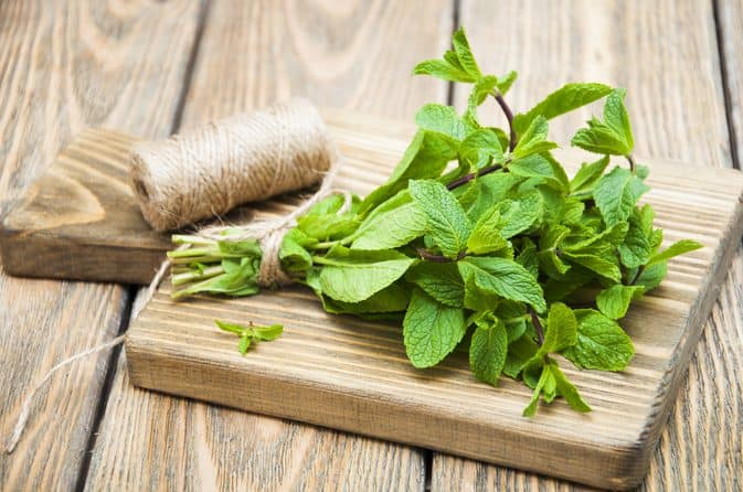 Health Benefits of Peppermint Leaves