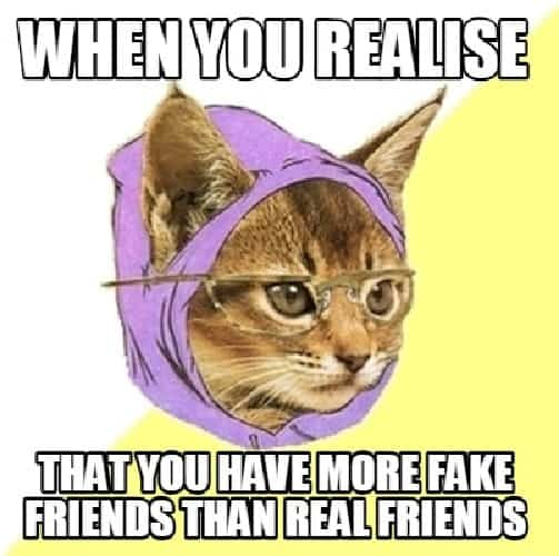 fake friend meme funny