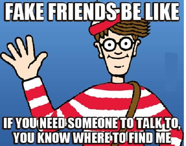 meme about fake freind