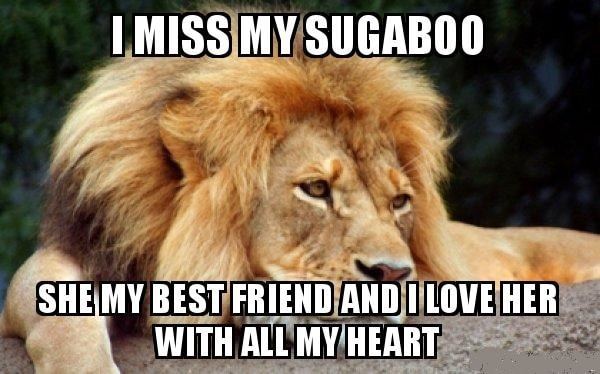 funny memes about missing best friend