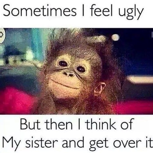 funny sister memes to lol
