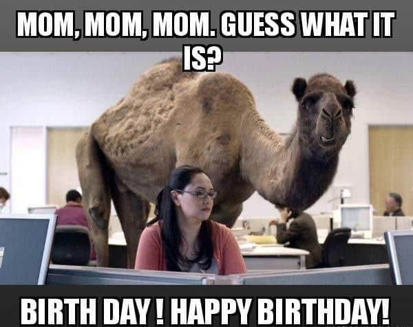 Memes to your mom happy birthday