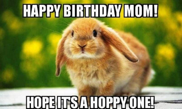 funny happy birthday mom meme