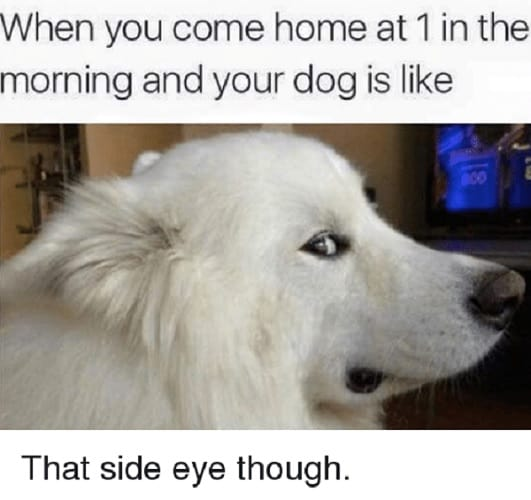 funniest side eye meme