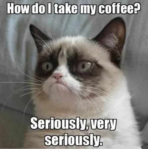 I need coffee meme that makes you laugh