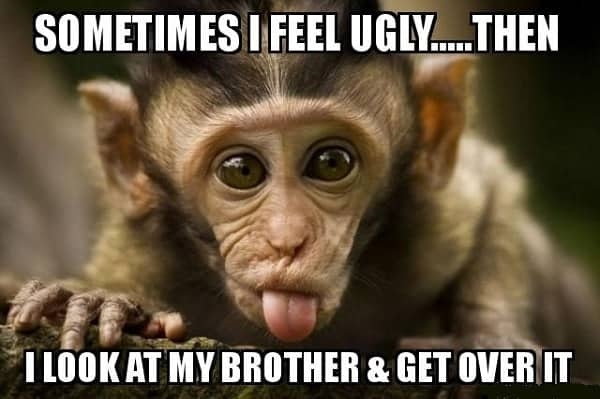 hilarious meme for brother