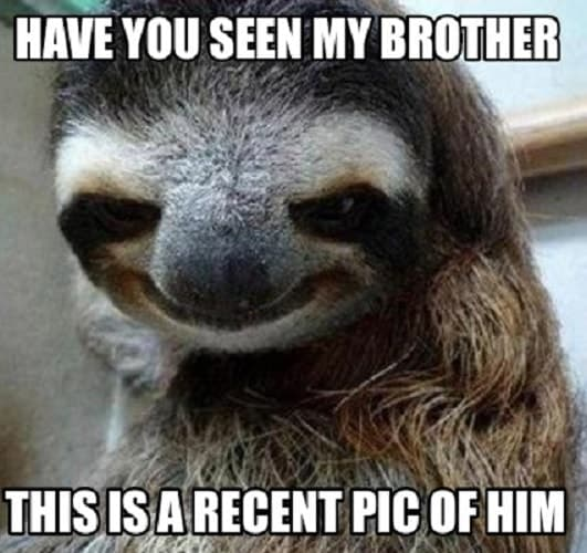 funny memes for your brother