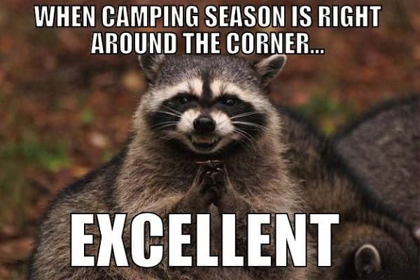 funny meme for camping season