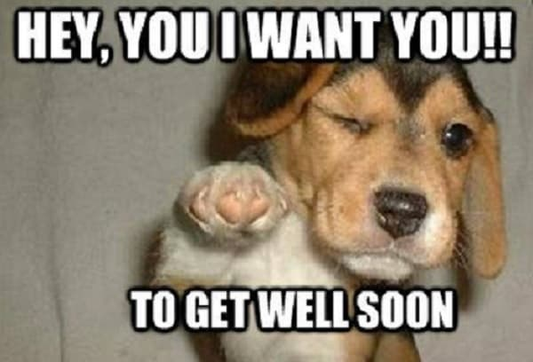 funny get well memes