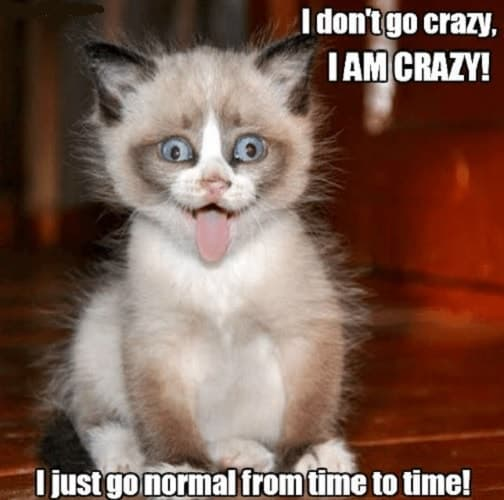25+ Best Memes About Going Crazy | Going Crazy Memes |Going Crazy Meme