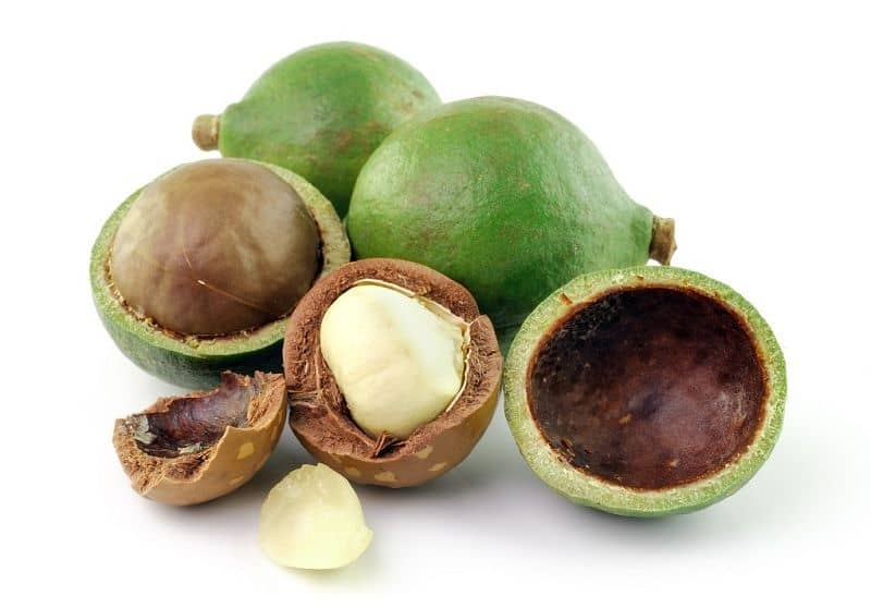 Tamanu oil for Hair