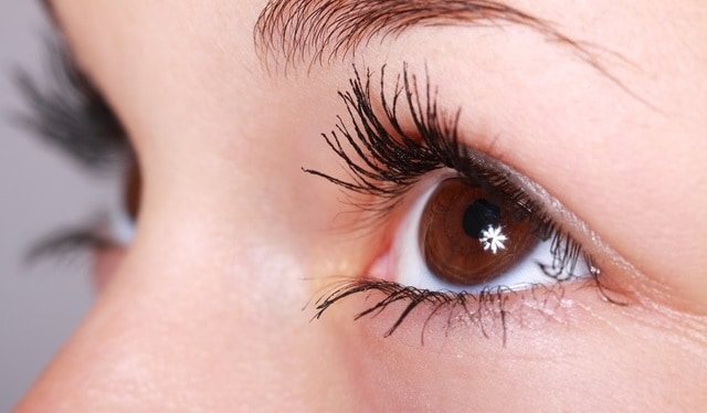 argan oil for eyelash growth