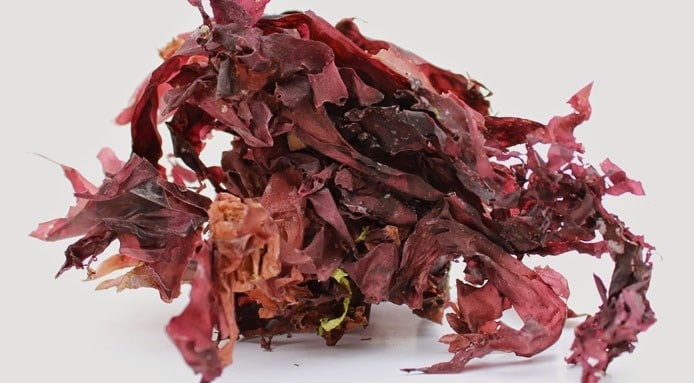 how to take red marine algae